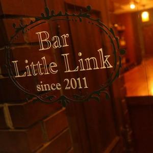 LITTLE_LINK