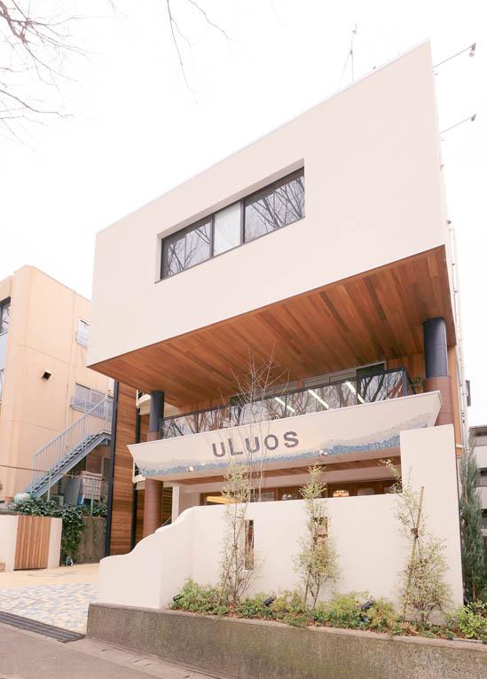 uLuos たまプラーザ ビル